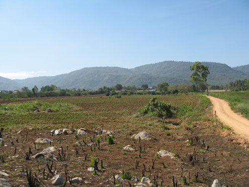 Khlong Duea 95 1