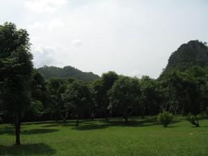 ที่ดินพร้อมบ้าน Khaoy Yai land and house