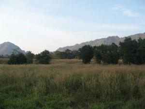ธนะรัตช์ 43 - ที่ดินบนถ.ธนะรัตช์  43 ไร่ ทำเลดีเหมาะกับการลงทุน วิวสวย ด้านหลังเป็นเทือกฝั่งเขาใหญ่