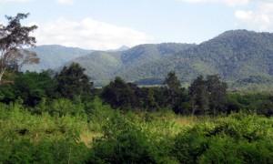 โต่งโต้น  16 16 ไร่  เป็นเนินวิวเทือกเขาใหญ่รอบด้าน ล้อมรั้วมีถนนทางเข้าสองด้าน ใกล้สนามกอล์ฟคีรีมายา