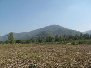 ที่ดิน 29 ไร่ แยกจากถนนเส้นทางไปวังน้ำเขียว ใกล้โครงการจัดสรรของจุลดิส มีบ่อเก็บน้ำชุ่มชื้นได้ตลอดปี