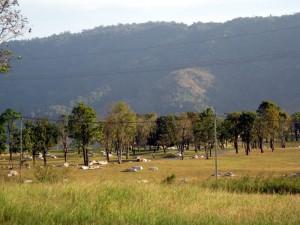 วิวสวยเห็นภูเขาโอบล้อม  มีตาน้ำ