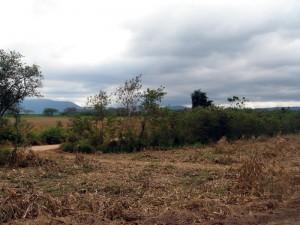 ในที่ดินมีบ่อน้ำเป็นแอ่งตาน้ำธรรมชาติน้ำเต็มตลอดทั้งปี