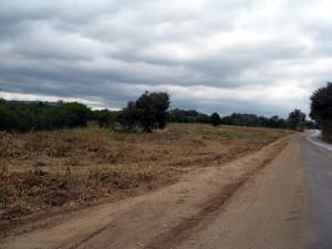 ที่ดิน 20 ไร่มีถนนคู่ขนานที่วิ่งไปทอสกาน่า  และเส้นทางไปวังน้ำเขียว