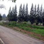 2 rai land near Chateau de Khao Yai