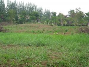 Chateau de Khao Yai land 2 rai