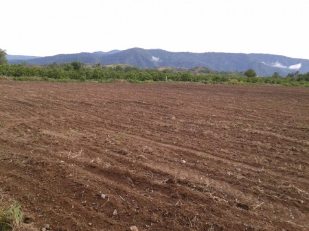 ที่ดินสวย 10 ไร่ อยู่เลยโครงการทอสกาน่าไม่ถึงกิโล